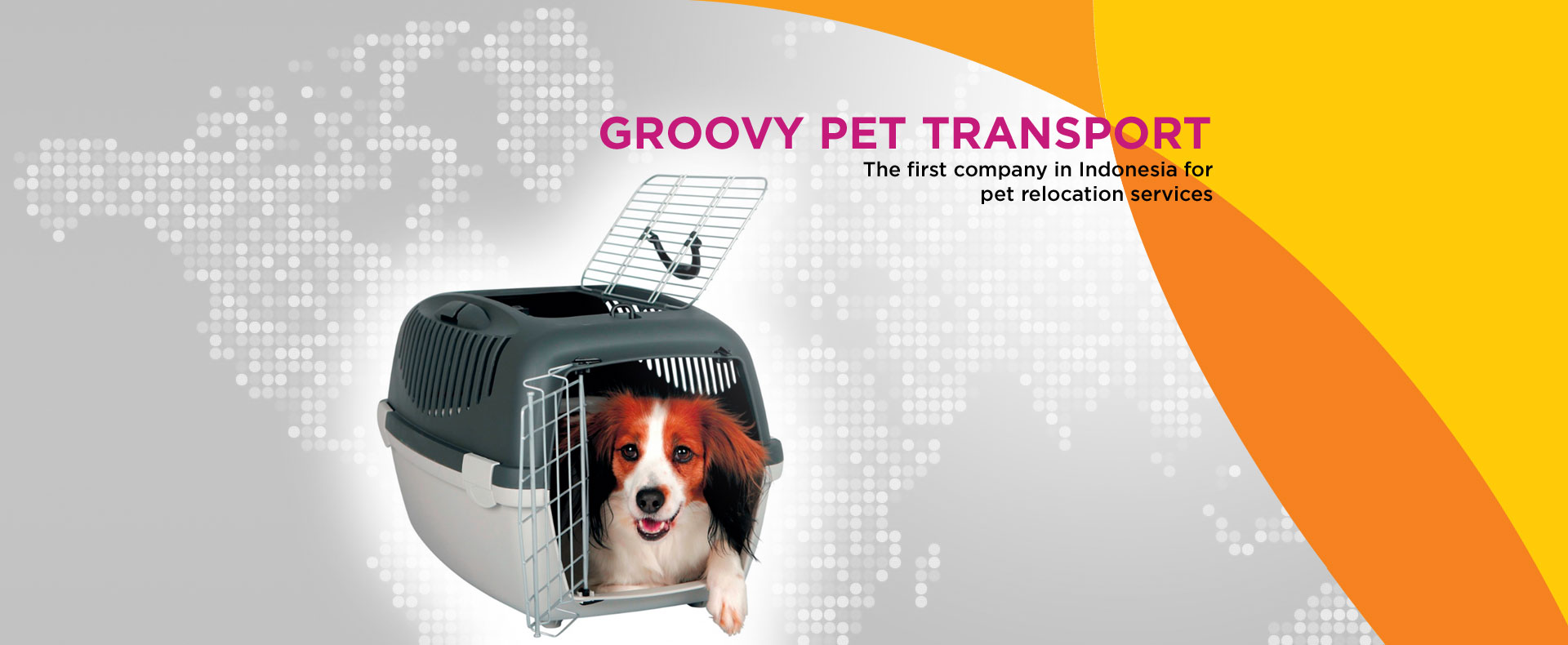 pet transport