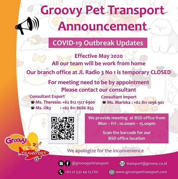 Groovy Pet Transport